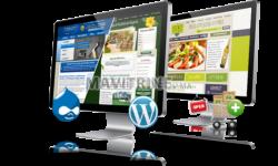 Création site web (prix choc)