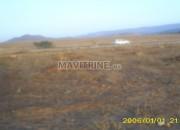 Photo de l'annonce: Terrain titré d'une superficie d'1 hectare sur la route oujda- touissante
