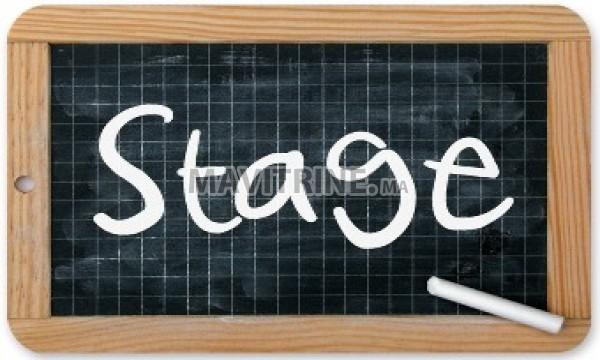 Stagiaires en gestion & Secrétariat
