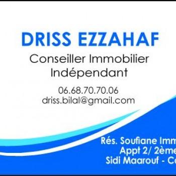 Logo du Vitrine: DRISS EZZAHAF
