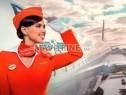 Photo de l'Annonce: Steward et hôtesses de l'air