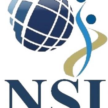Logo du Vitrine: NSI CONSULTING