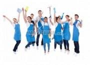 Photo de l'annonce: Femmes de ménage et nettoyage , jardinage
