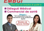 Photo de l'annonce: formation délegué médical -commercial de santé