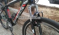 Vélo ITALIANO BIKE pic shimano