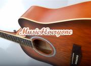 Photo de l'annonce: Guitares acoustiques