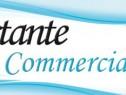 Photo de l'Annonce: Assistantes commerciale