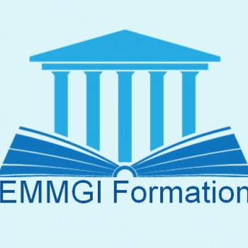Logo du Vitrine: EMMGI
