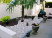 Photo de l'annonce: jardinier/Rabat   création jardin galets blanc décoration maroc