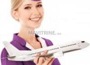 Photo de l'annonce: Formation Hotesse de l'air - Stewards