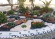 Photo de l'annonce: Nettoyage jardinage Desinsectisation