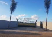 Photo de l'annonce: Terrain agricole de 02Ha équipe en Goutte a Goutte