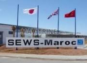 Photo de l'annonce: SEWS Maroc recrute plusieurs profils