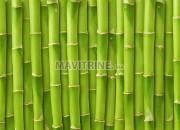 Photo de l'annonce: massage au bambous