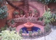Photo de l'annonce: Jardinage et décoration