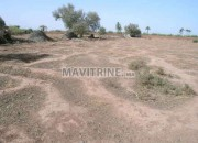 Photo de l'annonce: Terrain à vendre route de Fès km 15