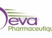 Photo de l'annonce: Deva Pharmaceutique Maroc recrute plusieurs profils
