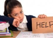 Photo de l'annonce: Cours de soutien et aide aux devoirs