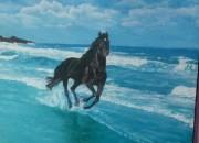 Photo de l'annonce: tableau peinture a huile 70 cm/60