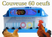 Photo de l'annonce: les étapes de l'éclosion des œufs avec incubateur
