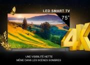Photo de l'annonce: Télévisions smart marque revolution
