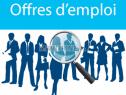 Photo de l'Annonce: Assistant(e)s Ressources humaines