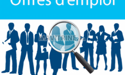 Assistant(e)s Ressources humaines