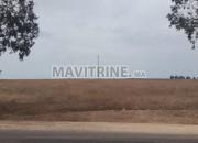 Photo de l'annonce: Terrain agricole avec puits titré à vendre