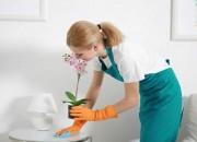 Photo de l'annonce: Vous avez besoin d´une femme de ménage, nounou, cuisiniére … ?