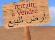 Photo de l'annonce: Terrain à sidi abdesalam tri9 azla