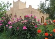 Photo de l'annonce: Superbe Riad à vendre à Marrakech